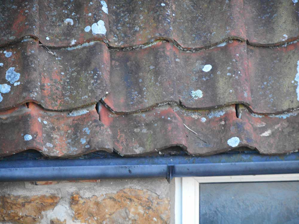 Building Survey highlighting roofing defects - Wessex Surveyors