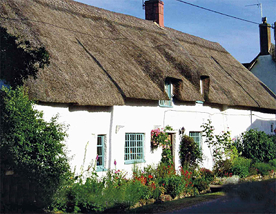 Thatched Roofs Under Threat